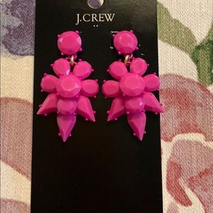 J Crew Opaque Statement Earring NWT
